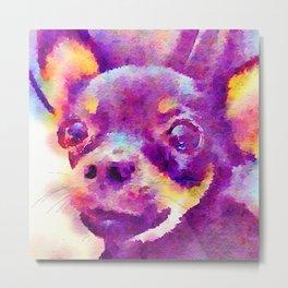 Lizzy (Chihuahua) Metal Print