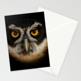 Trading Glances with a Spectacled Owl Stationery Cards