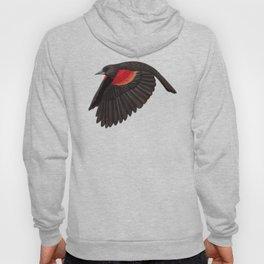 Red-winged Blackbird Hoody