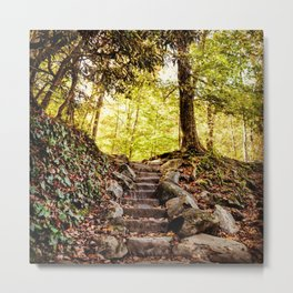 Rock Stairway Cades Cove Tennessee by Alli Gunter Photography Metal Print