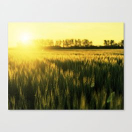 Place to be Canvas Print