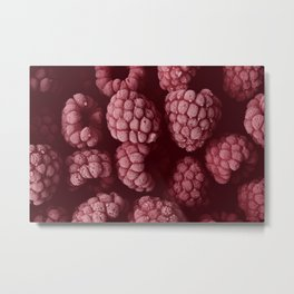 Raspberries in red Metal Print