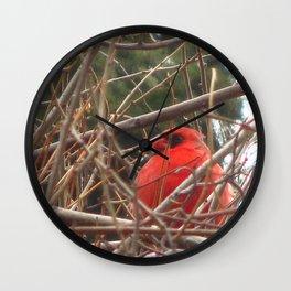 Chilly Cardinal 2 Wall Clock