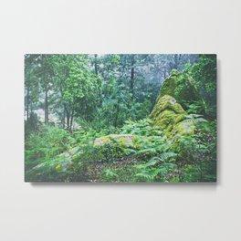 The Nature's green Metal Print
