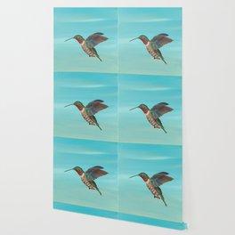 Hummingbird on the Move Wallpaper
