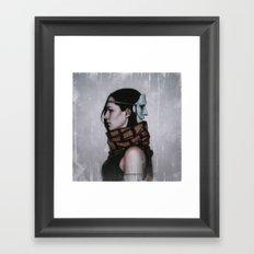 Albatross Framed Art Print