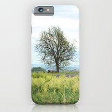 Field Below iPhone 6s Slim Case