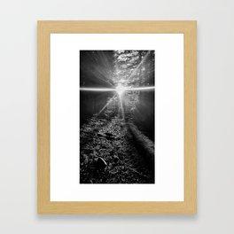 Follow the Sunlit Path Framed Art Print