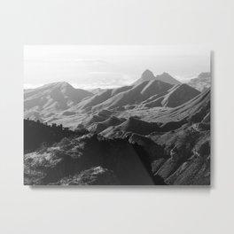 Chisos Mountains Metal Print