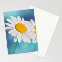 Summertime 116 Stationery Cards