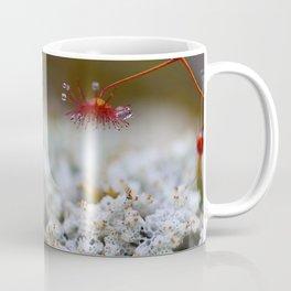 Drosera Coffee Mug