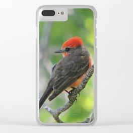 Vermilion Flycatcher Clear iPhone Case