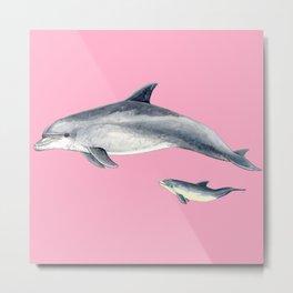 Bottlenose dolphin pink Metal Print