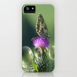Feast for the eyes iPhone Case