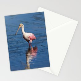 Roseate Spoonbill at Ding V Stationery Cards