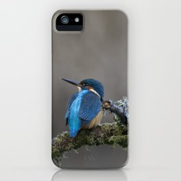 Common Kingfisher looking left iPhone Case