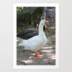 French Goose Art Print