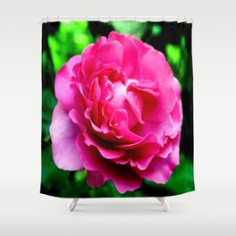 Queen Elizabeth Rose Shower Curtain