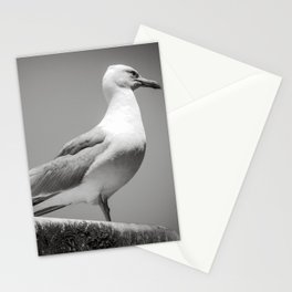 Gull Stationery Cards