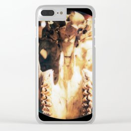 Ramskull No.3 Clear iPhone Case