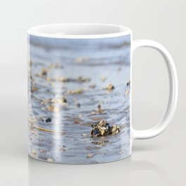 Shells in the sand 3 Coffee Mug