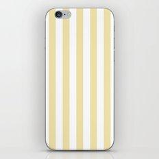 Vertical Stripes (Vanilla/White) iPhone & iPod Skin
