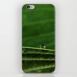 so green iPhone Skin