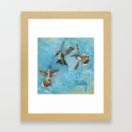 Hummingbird Trio: A Brave Black-chinned takes on the Rufous Twins Framed Art Print
