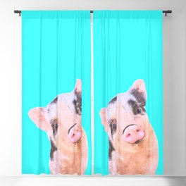 Baby Pig Turquoise Background Blackout Curtain