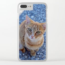 give me a little love Clear iPhone Case