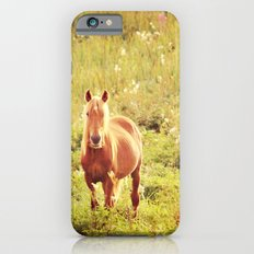 All the Pretty Horses iPhone 6s Slim Case