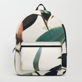 Ficus Elastica #8 Backpack