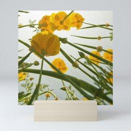 Looking Through Yellow Daisies to the Sky Mini Art Print
