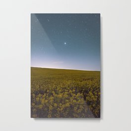 Fields of Yellow, Stars and Blue Metal Print