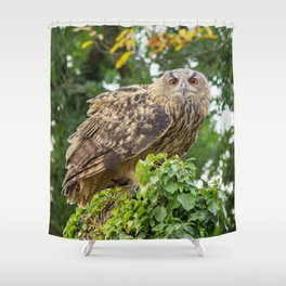 The owl is watching you Shower Curtain