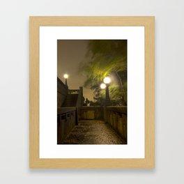 Wild Night Framed Art Print