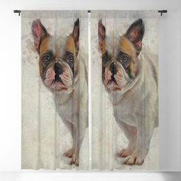 French Bulldog Blackout Curtain