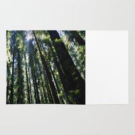 Redwood Forest Rug