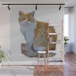 red cat Wall Mural