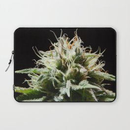 Cannabis Pineapple Chunk Laptop Sleeve