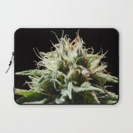 Cannabis Pineapple Chunk Laptop Sleeve