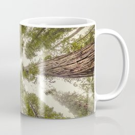 Into the Mist - Nature Photography Coffee Mug