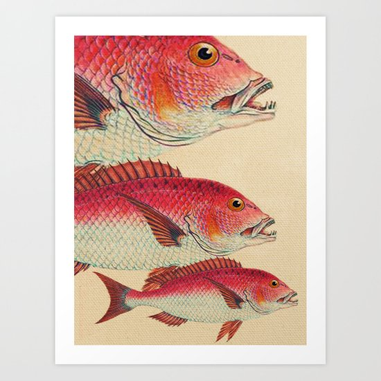 Fish Classic Designs 7 Art Print