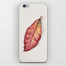Petra Croton iPhone Skin