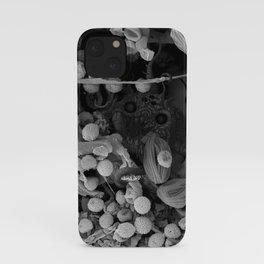 Nocopseudobacillum iPhone Case