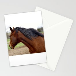 Pony's Mane Stationery Cards