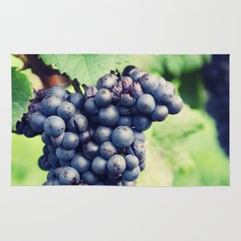 Red Wine Grapes II Rug