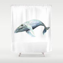 Humpback 2012 Shower Curtain