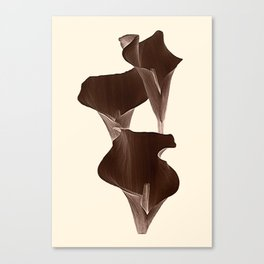 Brown Calla Lilly. Canvas Print