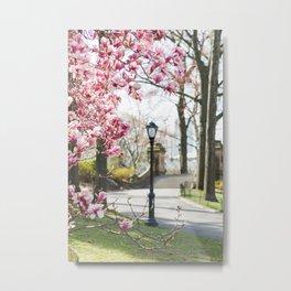 Spring in Central Park Metal Print